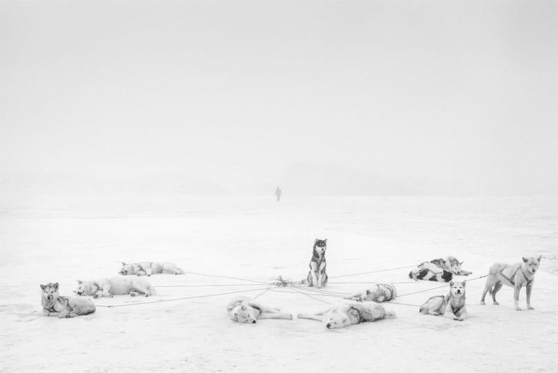 Ragnar Axelsson - Artic Heroes